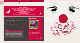 Création site internet